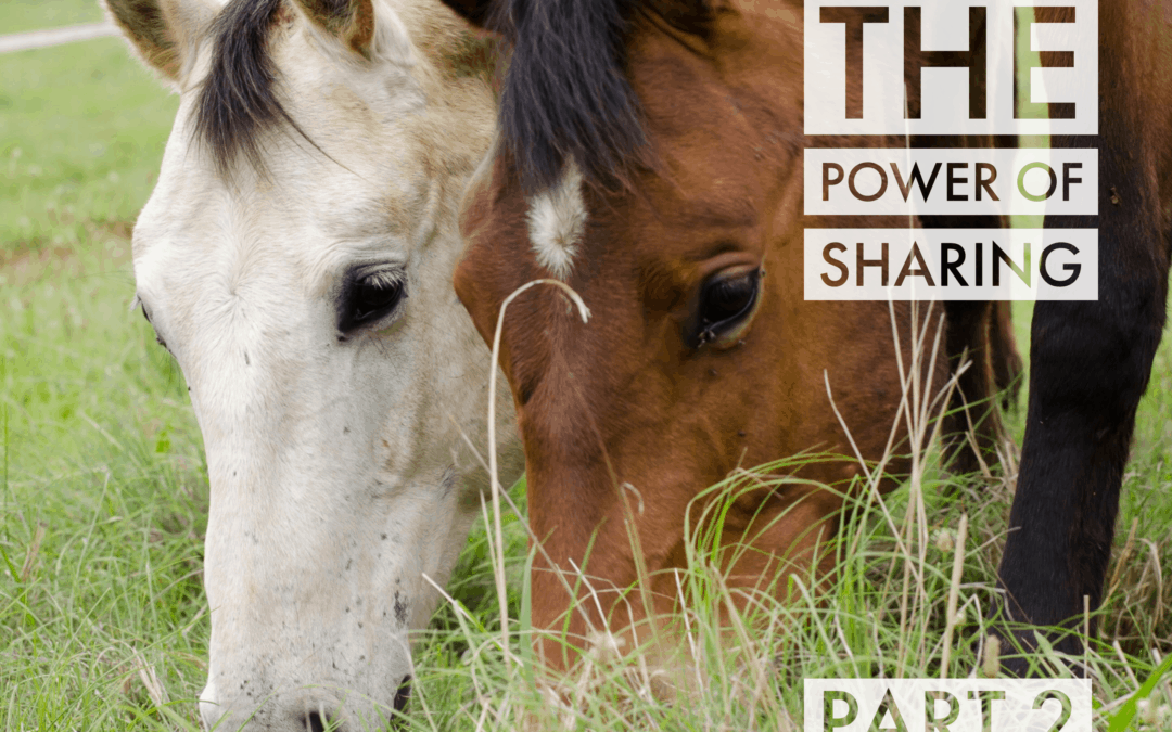 The power of sharing – part two